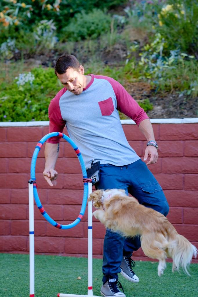Brandon mcmillan lucky dog